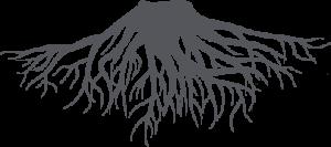 raices_root